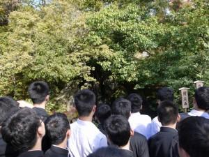 18.中3修学旅行(第5日)29